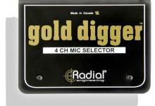 golddigger-top-lrg